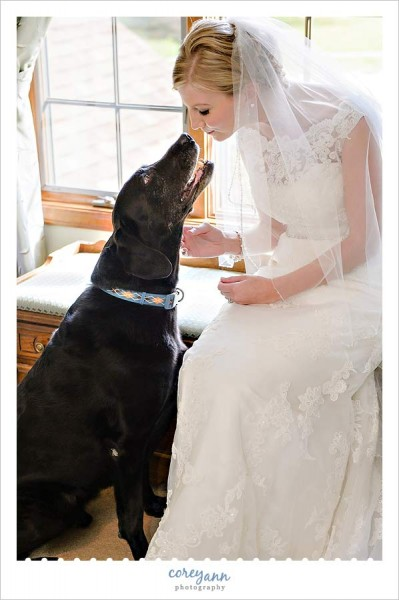 bride with her black lab dog before the wedding