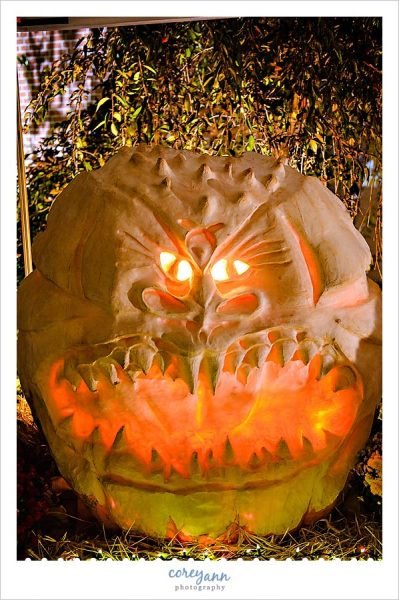 large skinnned pumpkin that has been carved