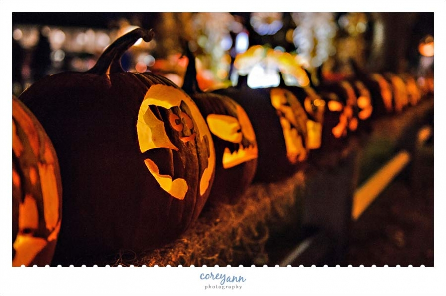 Ogunquitfest Pumpkins in October
