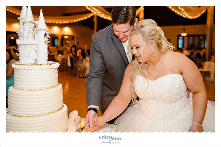 bride and groom cutting cakes of elegance cake