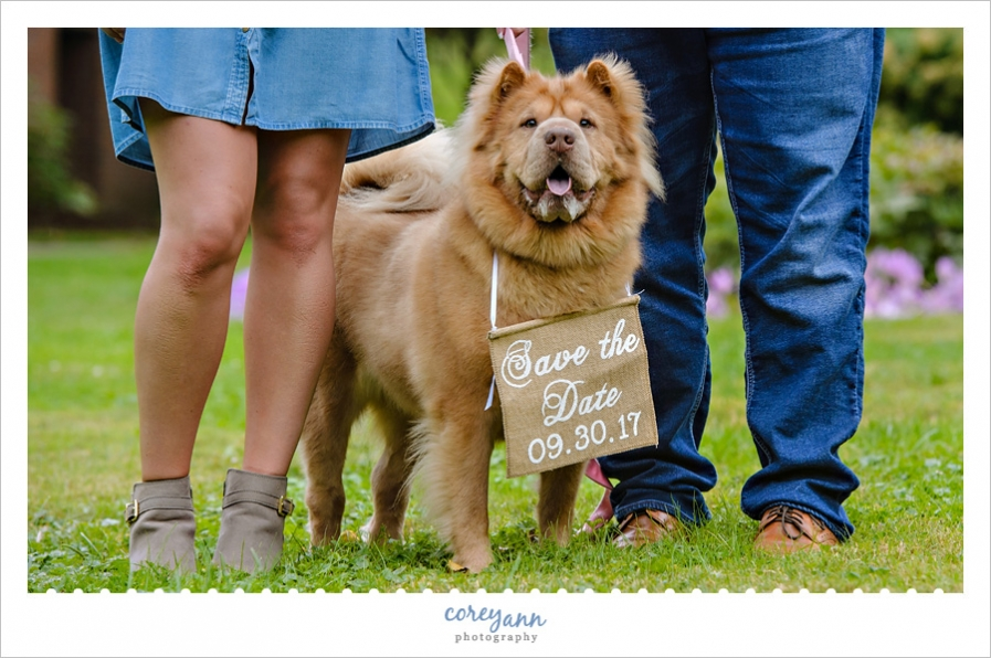 Dog Save the Date Engagement Announcement