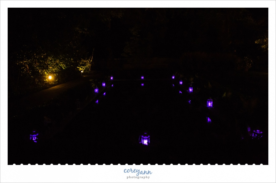 purple lanterns lighting up reflective pool