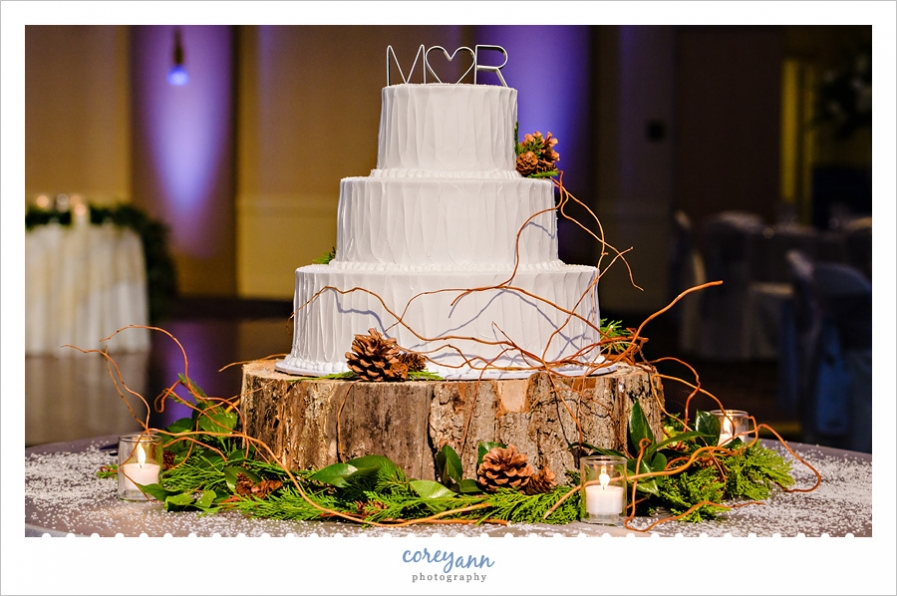 Winter wedding cake on tree stump