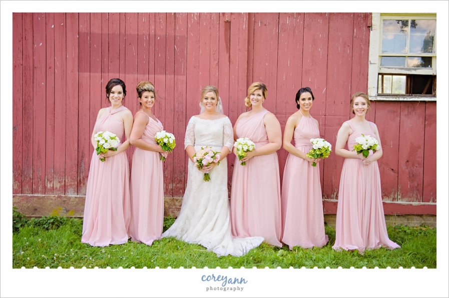 Bride with bridesmaids in pink gowns